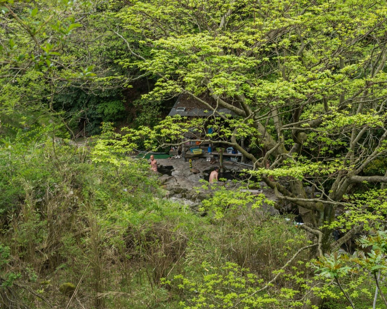 FRANÇOIS CAVELIER Rotenburo, Wild Hot-Spring. Kyushu Japan